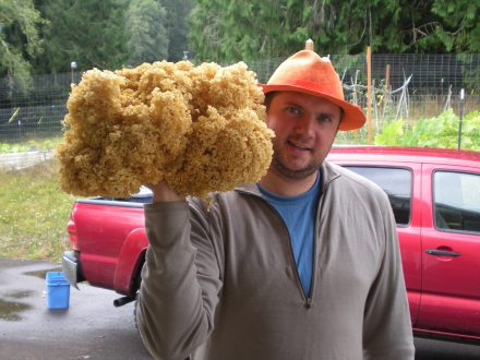 Dane and a hefty cauliflower mushroom.