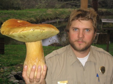 For this moment, Dane was the king of King Boletes.